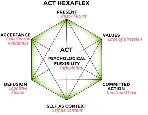 [Obrazek: ACTHexaflex.jpg]
