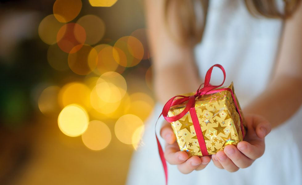 Our Holiday Gift Giving Guide – Spoil Your Loved Ones With This List!